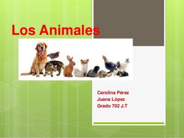 Los Animales Carolina Pérez Juana López Grado 702 J.T