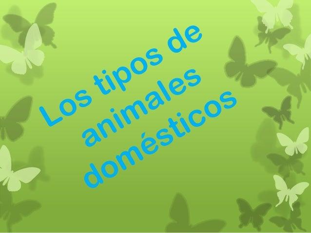 Los animales domésticos son aquellos que viven con el ser humano y estándomesticados.El primer animal doméstico fue el per...