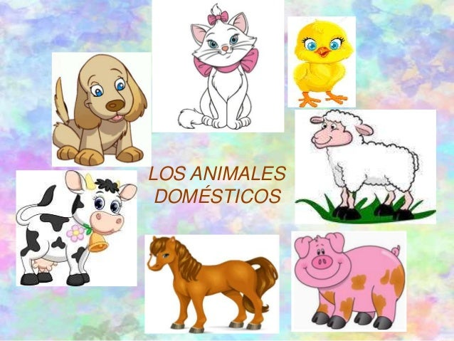 Vaca y pollo online dating 1
