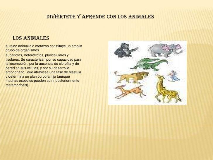 Diviértete y aprende con los animales<br />los animales <br />el reino animalia o metazoo constituye un amplio grupo de or...