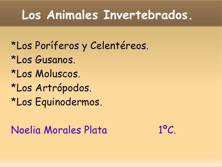 Los Animales Invertebrados.  *Los Poríferos y Celentéreos. *Los Gusanos. *Los Moluscos. *Los Artrópodos. *Los Equinodermos...