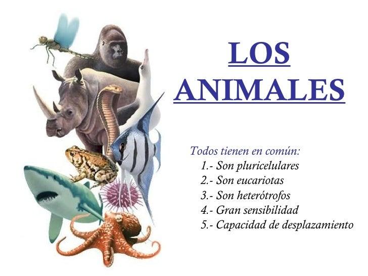 Capacidad de los Animales Vertebrados