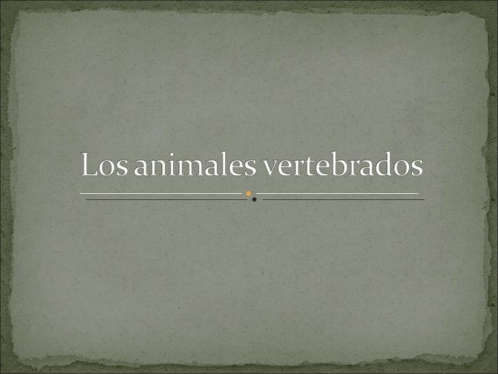 Los animales vertebrados.becerril Slide 1