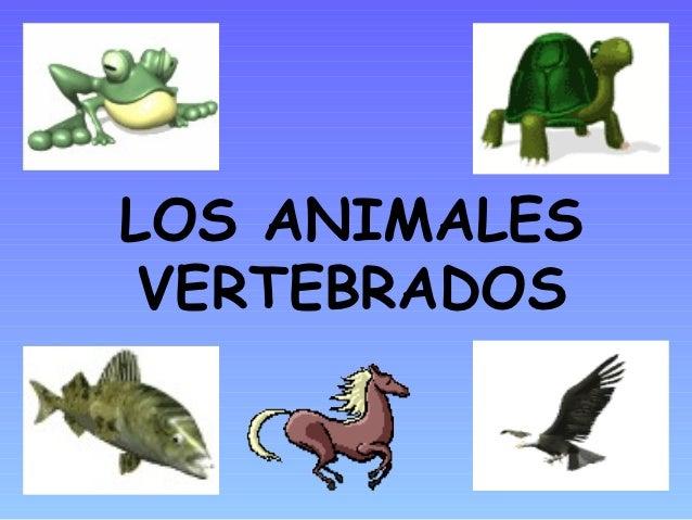 Los animales vertebrados ud4