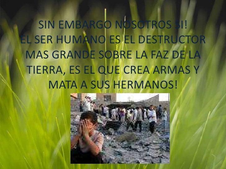 SIN EMBARGO NOSOTROS SI! EL SER HUMANO ES EL DESTRUCTOR MAS GRANDE SOBRE LA FAZ DE LA TIERRA, ES EL QUE CREA ARMAS Y MATA ...