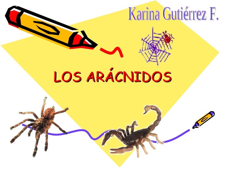 LOS ARÁCNIDOS Karina Gutiérrez F.