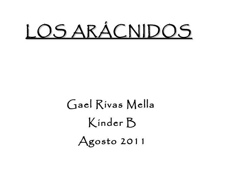 LOS ARÁCNIDOS Gael Rivas Mella  Kinder B Agosto 2011