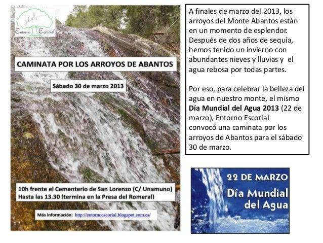 A finales de marzo del 2013, losarroyos del Monte Abantos estánen un momento de esplendor.Después de dos años de sequía,he...