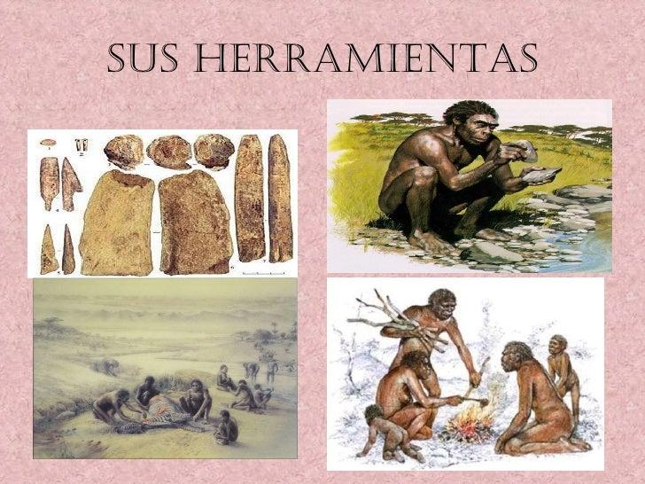 SUS HERRAMIENTAS