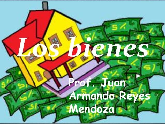 Los bienes Prof. Juan Armando Reyes Mendoza