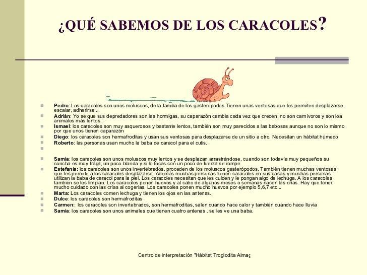 Los caracoles for Caracoles de jardin