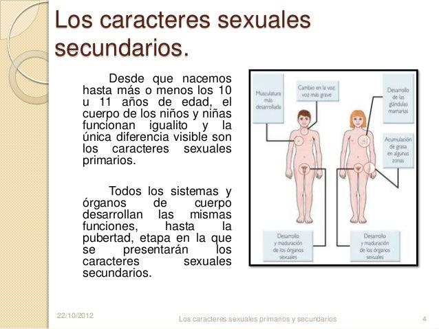 Caracteres sexuale secundarios de hombres y mujeres