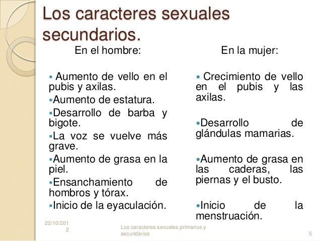 Caracteres sexuale secundarios del hombre yahoo