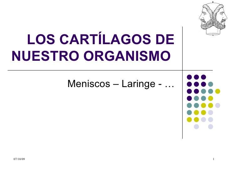 LOS CARTÍLAGOS DE NUESTRO ORGANISMO  Meniscos – Laringe - …