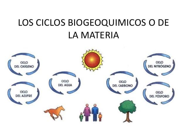 LOS CICLOS BIOGEOQUIMICOS O DE LA MATERIA