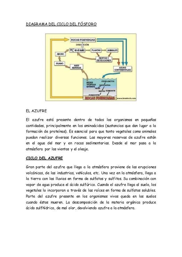 Fantástico Rocas Y Hoja Ciclo De Las Rocas Molde - hojas de trabajo ...