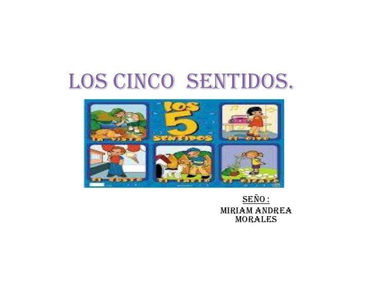 LOS CINCO SENTIDOS.                 SEÑO :            MIRIAM ANDREA               MORALES