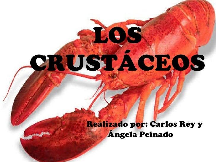 Los crustáceos 5