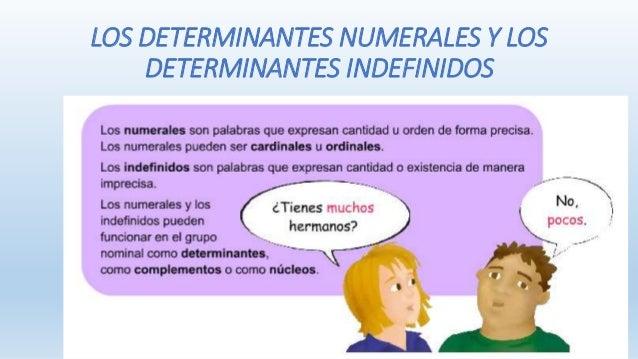 LOS DETERMINANTES NUMERALES Y LOS  DETERMINANTES INDEFINIDOS