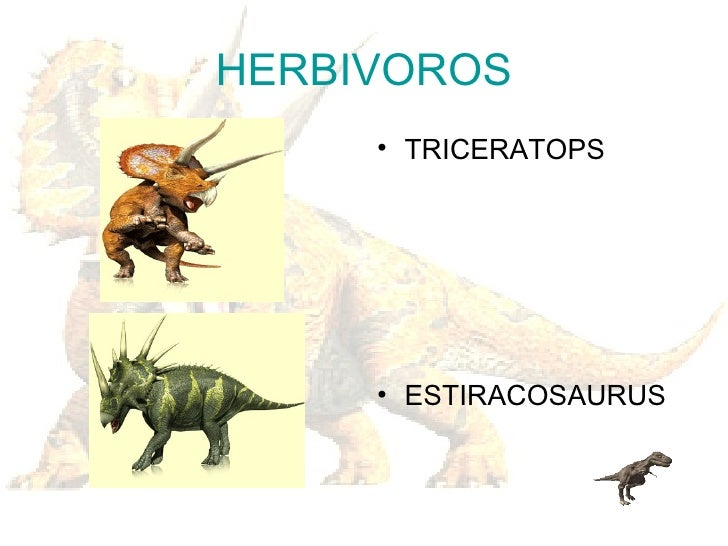 Los Dinosaurios Se trataba de una nueva especie de dinosaurio herbívoro, con enormes espinas que nacían de su cuello. los dinosaurios
