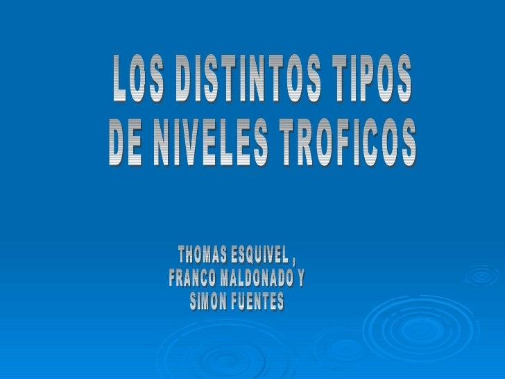 LOS DISTINTOS TIPOS  DE NIVELES TROFICOS THOMAS ESQUIVEL , FRANCO MALDONADO Y SIMON FUENTES