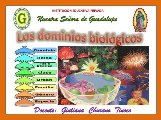 INSTITUCIÓN EDUCATIVA PRIVADA Nuestra Señora de Guadalupe Docente: Giuliana Churano Tinoco