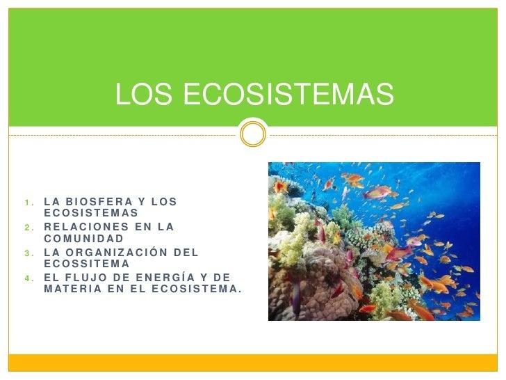 LA BIOSFERA Y LOS ECOSISTEMAS<br />RELACIONES EN LA COMUNIDAD<br />LA ORGANIZACIÓN DEL ECOSSITEMA<br />EL FLUJO DE ENERGÍA...