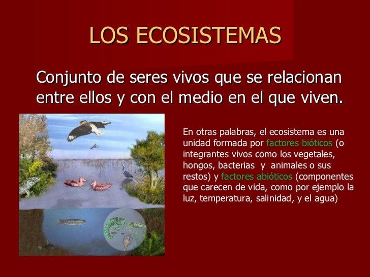 LOS ECOSISTEMAS <ul><li>Conjunto de seres vivos que se relacionan entre ellos y con el medio en el que viven. </li></ul>En...