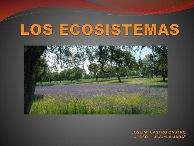 ¿QUÉ SON Y QUE ELEMENTOS LOS COMPONEN? Los ecosistemas son sistemas naturales en los cuales habitan seres vivos. Están com...