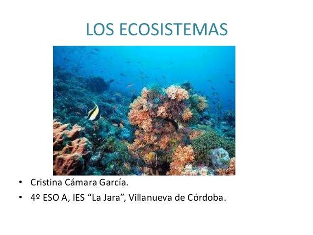 """LOS ECOSISTEMAS• Cristina Cámara García.• 4º ESO A, IES """"La Jara"""", Villanueva de Córdoba."""