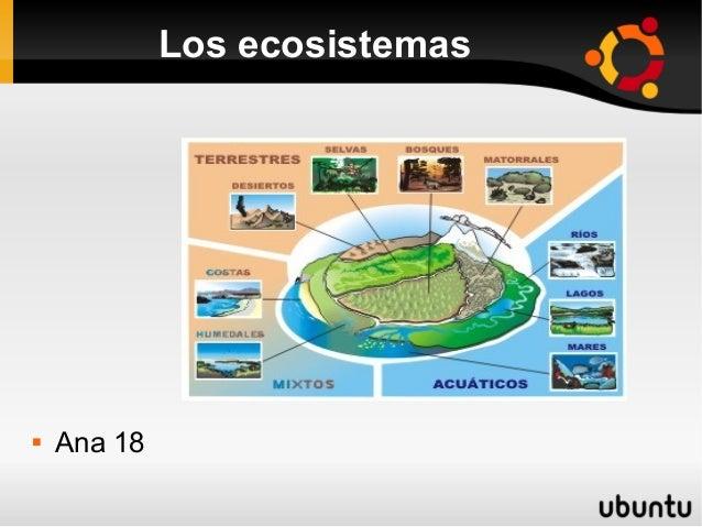Los ecosistemas   Ana 18