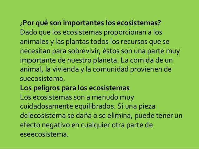 Los ecosistemas lvaro y alejandro for Porque son importantes los arboles wikipedia