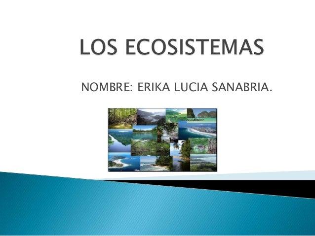 NOMBRE: ERIKA LUCIA SANABRIA.