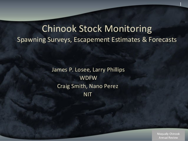 Nisqually Chinook Annual Review 1 Chinook Stock Monitoring Spawning Surveys, Escapement Estimates & Forecasts James P. Los...