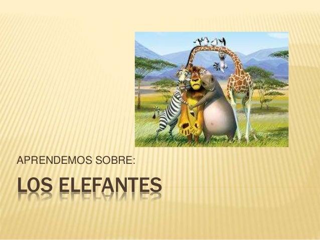 LOS ELEFANTES APRENDEMOS SOBRE: