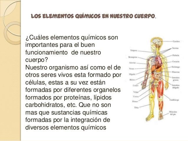Los elementos químicos en el cuerpo humano