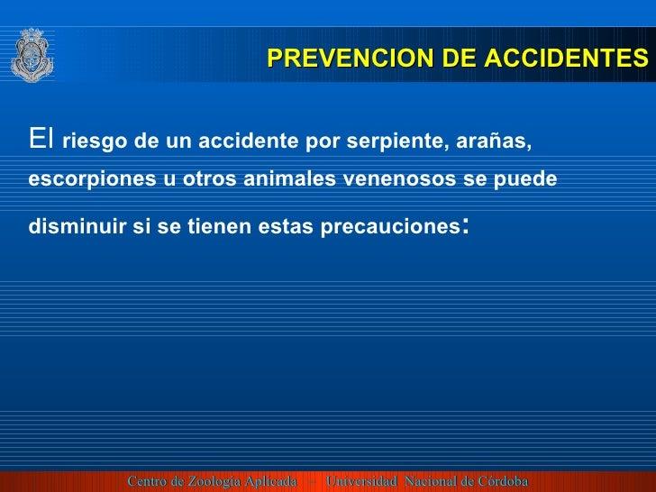 PREVENCION DE ACCIDENTES El   riesgo de un accidente por serpiente, arañas, escorpiones u otros animales venenosos se pued...