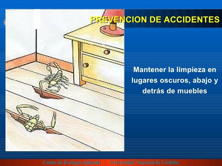 Mantener la limpieza en lugares oscuros, abajo y detrás de muebles PREVENCION DE ACCIDENTES