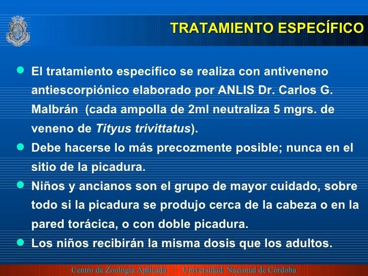 <ul><li>TRATAMIENTO ESPECÍFICO </li></ul><ul><li>El tratamiento específico se realiza con  antiveneno antiescorpiónico ela...