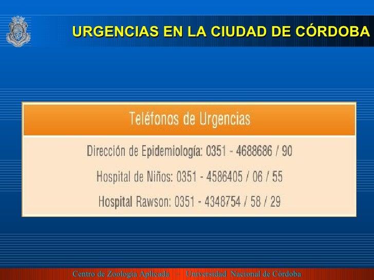 <ul><li>URGENCIAS EN LA CIUDAD DE CÓRDOBA </li></ul>