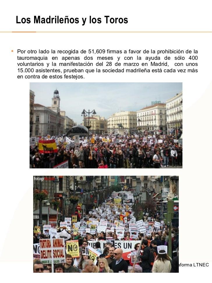 Los Madrileños y los Toros <ul><li>Por otro lado la recogida de 51,609 firmas a favor de la prohibición de la tauromaquia ...