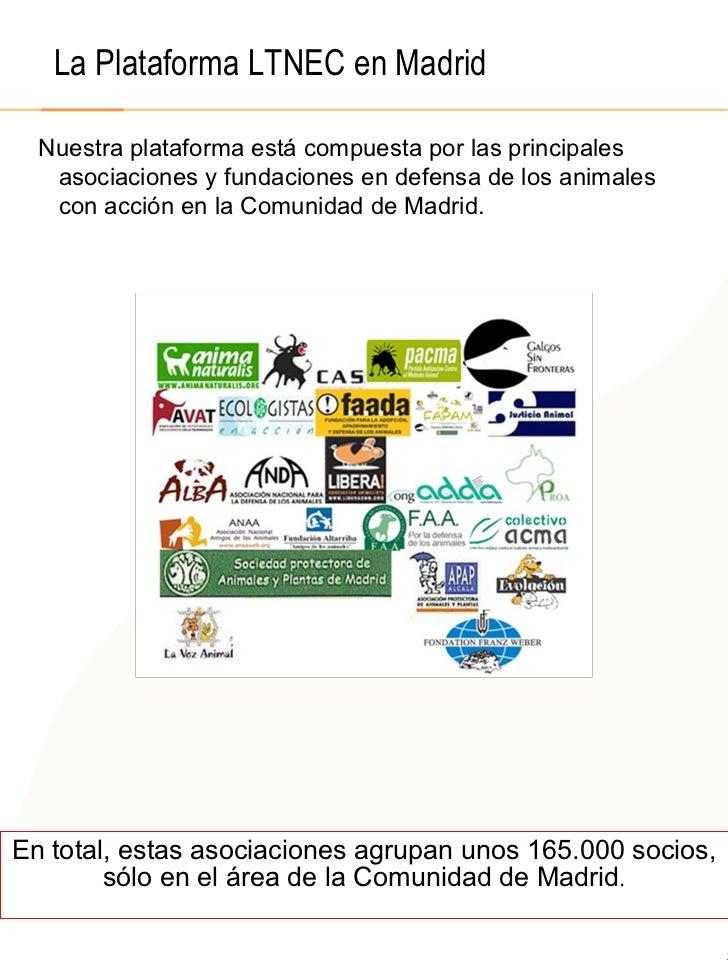 © 2008  F.A.A. All rights reserved La Plataforma LTNEC en Madrid Nuestra plataforma está compuesta por las principales aso...