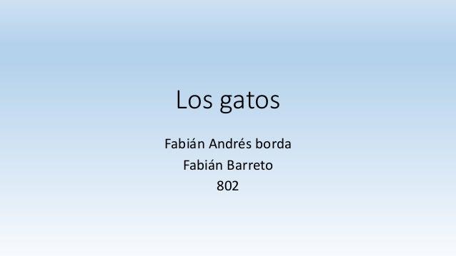 Los gatos  Fabián Andrés borda  Fabián Barreto  802