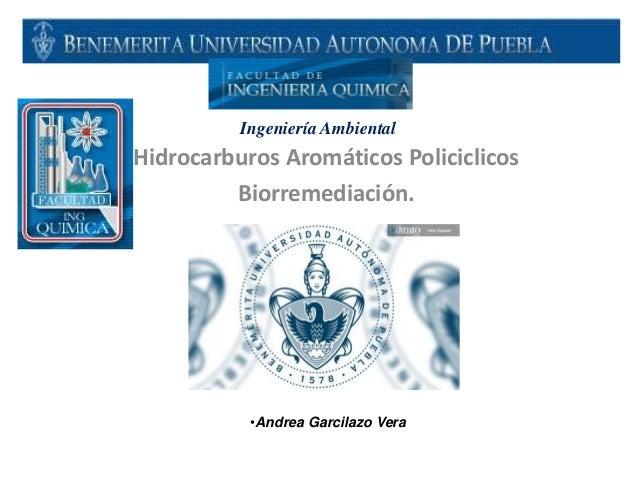 Hidrocarburos Aromáticos Policiclicos Biorremediación. •Andrea Garcilazo Vera Ingeniería Ambiental