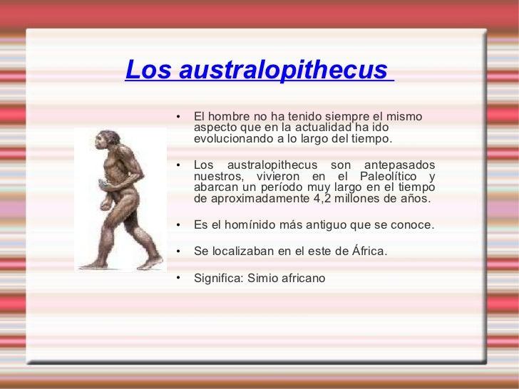 Los australopithecus  <ul><li>El hombre no ha tenido siempre el mismo aspecto que en la actualidad ha ido evolucionando a ...