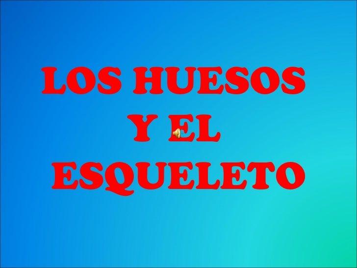 LOS HUESOS   Y ELESQUELETO