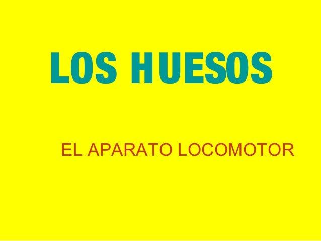 LOS HUESOS EL APARATO LOCOMOTOR