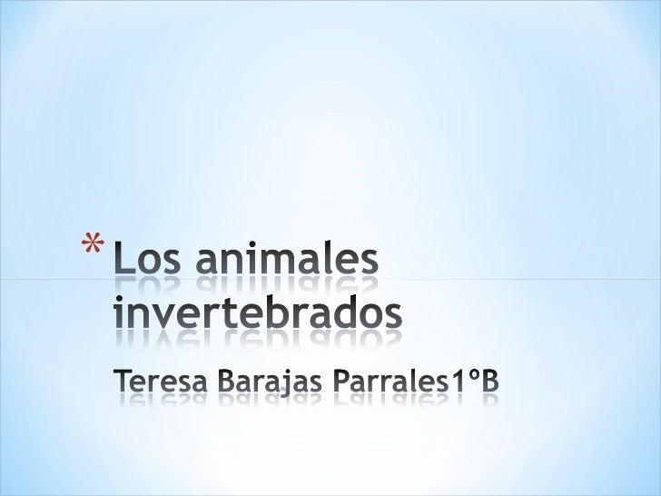 Los invertebrados.teresa 1ºb Slide 1