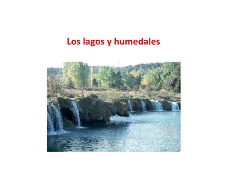 Los lagos y humedales