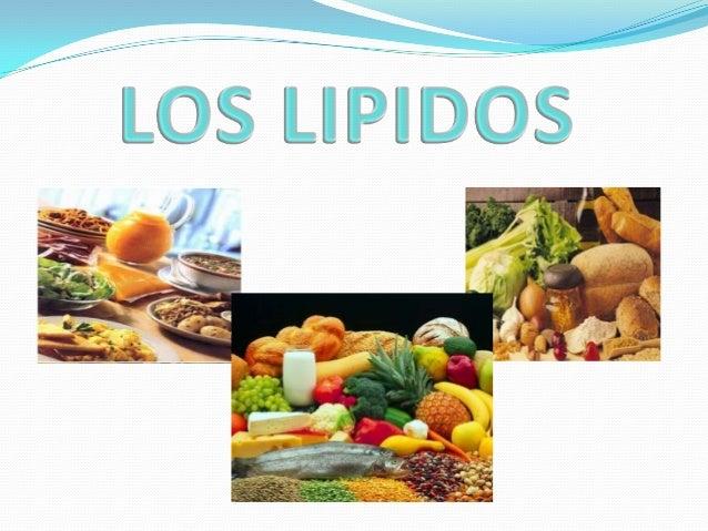Alimentos ricos en proteinas yahoo dating 1